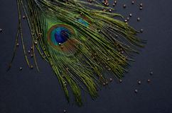 Exotic feathers. Beautiful green feathers with gold beads Royalty Free Stock Image