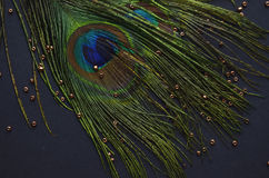 Exotic feathers. Beautiful green feathers with gold beads Royalty Free Stock Photo