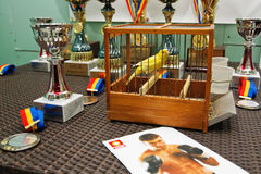 EXOTIC BIRDS AT GRAN BALKAN CUP COMPETITION. Lucian Bute image next to Lucian Bute the winner canary of the singing canaries competition from Serbia Stock Photography