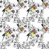 Exotic birds parrot with flowers colorful seamless pattern. Watercolor illustration. Stock Photo