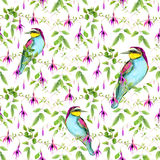 Exotic birds and tropical flowers. Seamless floral pattern. Watercolour Royalty Free Stock Image