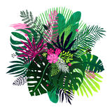 Exotic bouquet of tropical plants, palm leaves and flowers on a white background. Vector botanical illustration, design Stock Photo