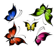 Exotic butterflies Stock Photo