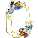 Exotic butterflies wild insect in a watercolor style. Frame border ornament square. Full name of the insect: butterflies. Aquarelle wild insect for background Royalty Free Illustration