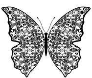 Exotic butterfly abstract patterns. Stock Photo