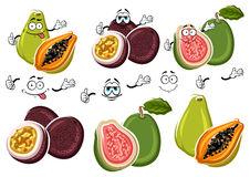 Exotic cartoon guava, passion fruit, papaya fruits Royalty Free Stock Image