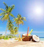 Exotic cocktail in coconut cup on tropical beach Stock Photography