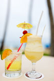 Exotic cocktails Stock Image