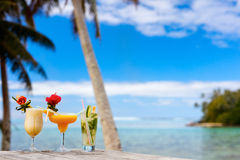 Exotic cocktails Stock Images