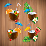 Exotic coconut cocktail set  illustration Royalty Free Stock Photo
