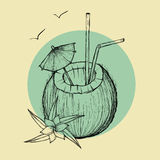 Exotic coconut cocktail. Vector sketch Illustration. Exotic coconut cocktail. Sketch illustration on rounded background Royalty Free Stock Photo