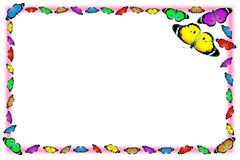 Exotic color butterfly frame Stock Photo