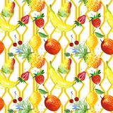 Exotic composition wild fruit pattern in a watercolor style. vector illustration