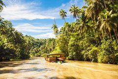 Exotic cruise boat with tourists on jungle river Stock Photo