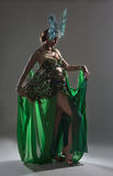 Exotic dancer in green costume with feathers Royalty Free Stock Photos