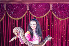 Exotic Dancer Holding Large Snake On Stage Royalty Free Stock Images