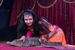 Exotic Dancer Petting Small Alligator on Stage Royalty Free Stock Photography