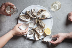 Exotic dish - oysters with wine Royalty Free Stock Photography