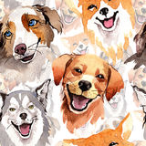 Exotic dog wild animal pattern in a watercolor style.