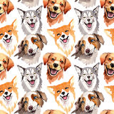 Exotic dog wild animal pattern in a watercolor style. Full name of the animal: dogs. Aquarelle wild animal for background, texture, wrapper pattern or tattoo Stock Photography
