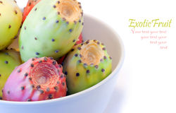 Exotic dragon fruit Stock Images