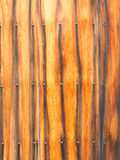 Exotic fence Stock Photos