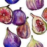 Exotic figs wild fruit in a watercolor style pattern. Exotic figs healthy food in a watercolor style pattern. Full name of the fruit: figs. Aquarelle wild fruit Stock Photo