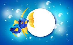 Exotic fish banner. Illustration of web banner with two exotic blue yellow colored fish Royalty Free Stock Photo
