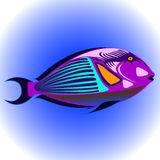 Exotic fish Royalty Free Stock Photos