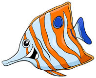 Exotic fish cartoon character. Cartoon Illustration of Sixspine or Butterfly Fish Exotic Sea Life Animal Character Stock Photography