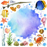 Exotic Fish, coral reef, algae, unusual sea fauna. Underwater world set. watercolor illustration for children  sea shells, anemones and decoration marine theme Stock Photos