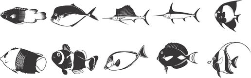 Exotic fish icons. Set of ten exotic fish icons on white background Stock Photo