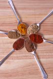 Exotic Flavours. Six different spice powders in silver spoons on a wooden chopping board Royalty Free Stock Photo