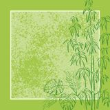 Exotic flora, background. Exotic background, contour bamboo plants, frame and abstract grunge pattern Stock Images