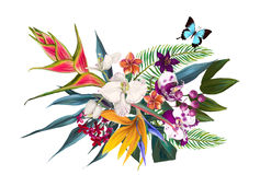 Exotic floral composition Royalty Free Stock Photo