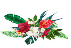 Exotic floral composition Royalty Free Stock Images