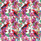 Exotic floral pattern - parrot bird, blooming orchid flowers. Exotic floral repeating  pattern - parrot bird, blooming orchid flowers. Seamless wallpaper in Stock Photography