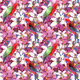 Exotic floral pattern - parrot bird, blooming orchid flowers. Exotic floral repeating  pattern - parrot bird, blooming orchid flowers. Seamless wallpaper in Royalty Free Stock Photo