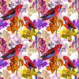 Exotic floral pattern - parrot bird, blooming orchid flowers Stock Photos