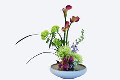 Exotic Flower Bouquet Stock Photography