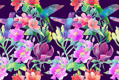 Exotic flowers and birds royalty free illustration