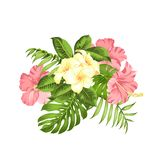 Exotic flowers bouquet of color bud garland. Label with plumeria flowers. Bouquet of aromatic tropical flowers. Invitation card template with color flowers of vector illustration