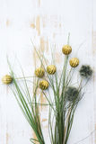 Exotic flowers and grass on white rustic wooden background Royalty Free Stock Images