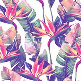 Exotic flowers, leaves in retro vanilla colors on pastel background. Unusual watercolor tropical seamless pattern with bird-of-paradise flower. Exotic flowers vector illustration