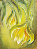 Exotic flowers. Oil painting Stock Images