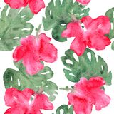 Exotic flowers pattern vector illustration
