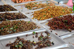 Exotic food fried Insect. In market Royalty Free Stock Photo