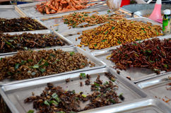 Exotic food fried Insect royalty free stock photos