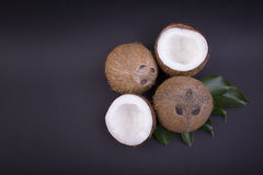 Exotic and fresh coconuts with green leaves on a dark purple background. Fresh, ripe and organic fruit of coconuts. Stock Images