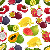 Exotic fresh fruits vector pattern. Tropical fruits pattern of orange, papaya, durian and guava, carambola and dragon fruit, lychee and feijoa, passion fruit Stock Images